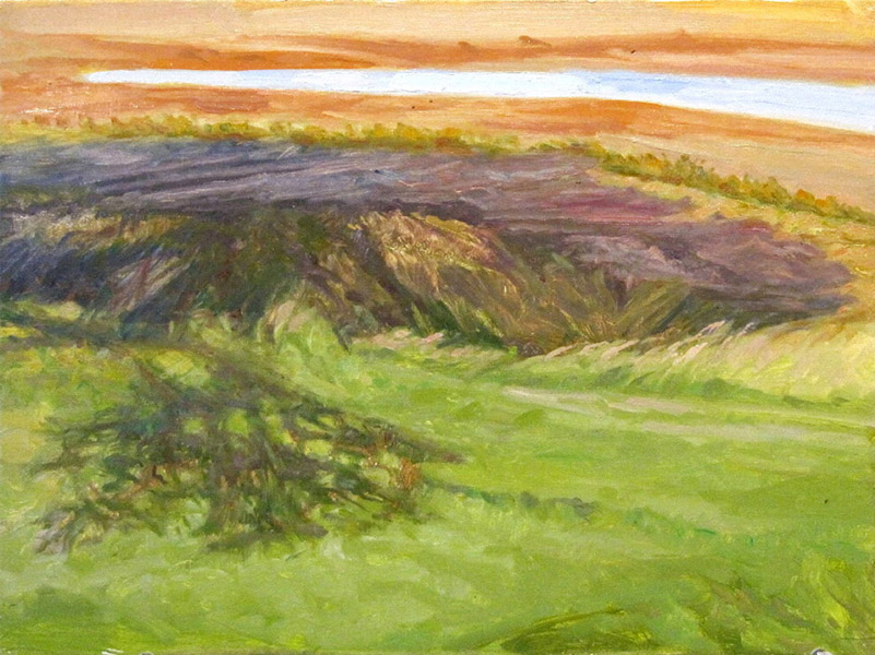 <i>Cast Shadows Over the Marsh, Machiasport, ME</i>, oil on canvas, 12 x 16""
